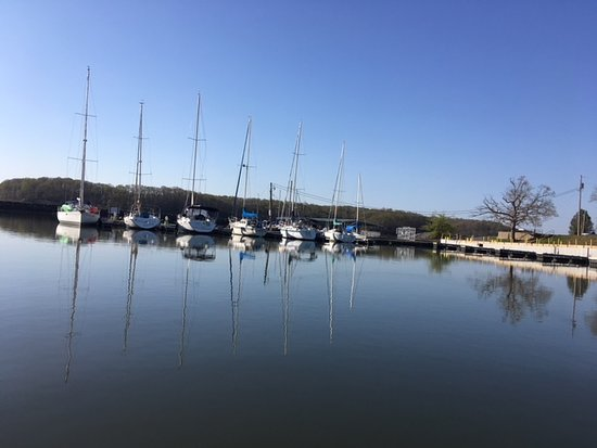 Hardin, KY: Tall masts of some of the sailboats.