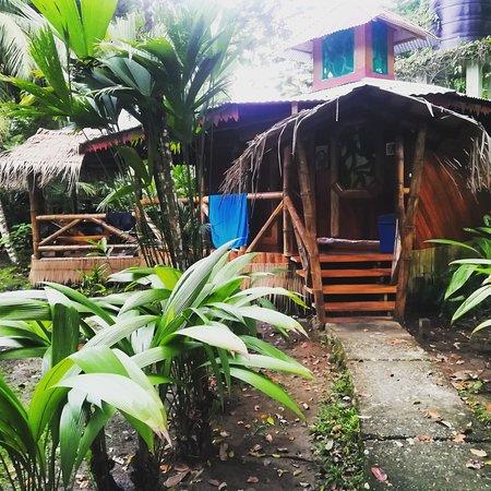 Bilde fra Hotel La Costa de Papito