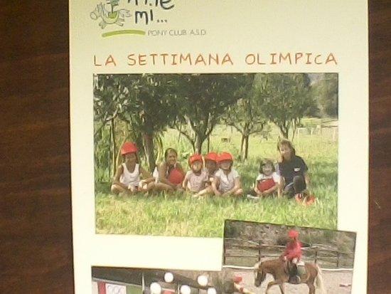 "Parco Avventura La Turna: Ricordi sportivi a ""A me mi"""