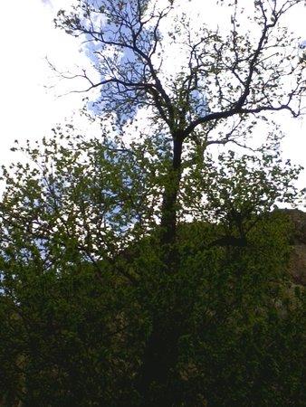 Parco Avventura La Turna: Panorami fantascientifici