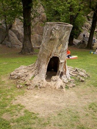 Parco Avventura La Turna: Casa dello Gnomo