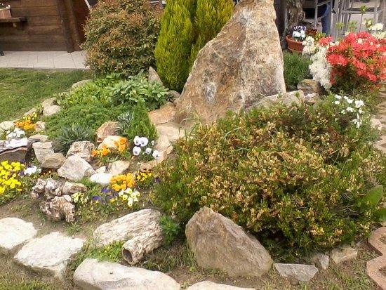 Parco Avventura La Turna: Composizione floreale con menhir