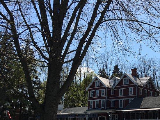 Auburn-billede