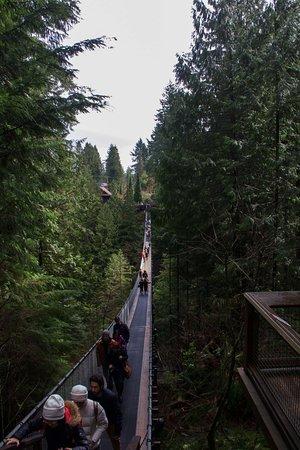 North Vancouver, Canadá: The Bridge