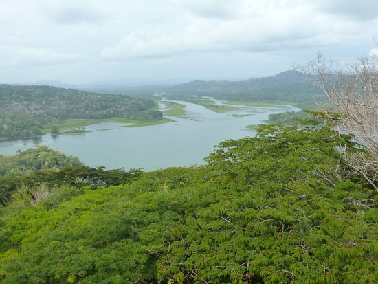 Soberania National Park: One of the views from the top