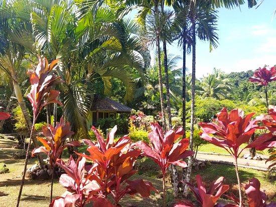 Korovisilou, Fiji: 20180511_170638_large.jpg