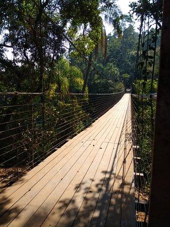 Cassorova Eco Park ภาพถ่าย
