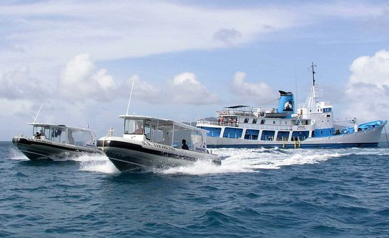 Federated States of Micronesia: Dive boats heading out to a wreck dive site