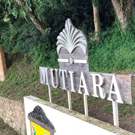 Kuala Tahan, ماليزيا: photo7.jpg
