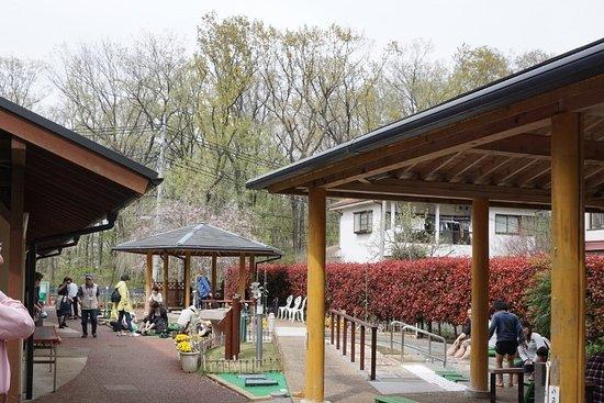 Kodaira, اليابان: 桜の季節の足湯