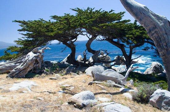 2-dages tur til Monterey, Carmel og...