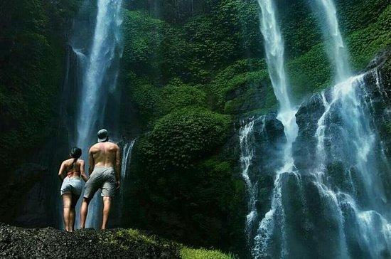 Private Sekumpul Waterfalls Trekking...