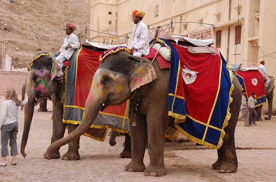 Tour Golden Triangle con Rajasthan