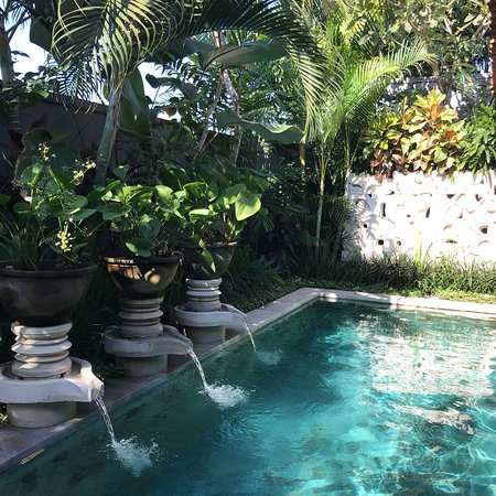 Peace and quiet in Canggu