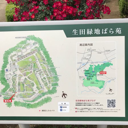 Ikuta Ryokuchi Rose Garden: photo0.jpg