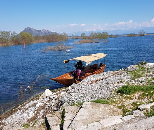Skadar Lake Cruise: This is the Golden frog tour boat