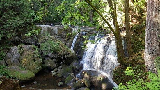 Whatcom Falls Park: 20180512_171857_large.jpg