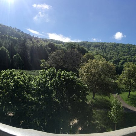 Bad Ramsach Quellhotel照片