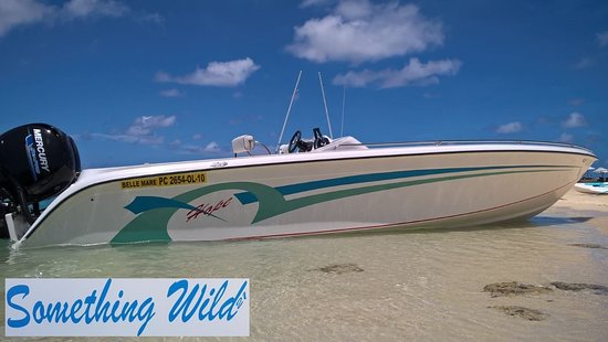 Trou d'eau Douce : Hope Speedboat Mauritius - Something Wild 21