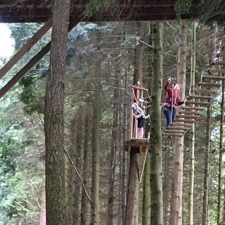 Gulworthy, UK: Tree surfing at Tamar Trails