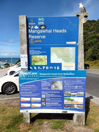 Mangawhai Walkway: Informative signs and easy parking at Mangawhai Heads