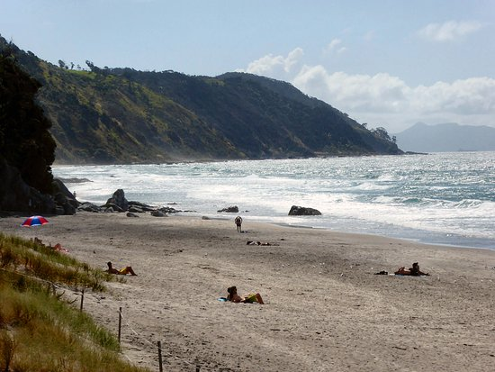 Mangawhai, Yeni Zelanda: Lovely beaches in this area