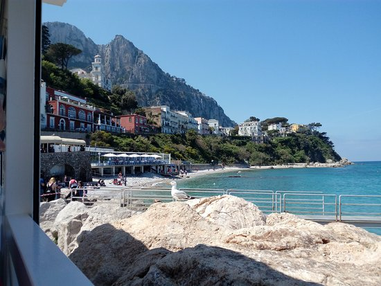 Lo Smeraldo: Marina Grande di Capri, panorama dal ristorante