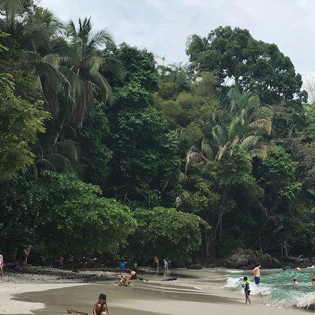 Expediciones Tropicales Day Tours