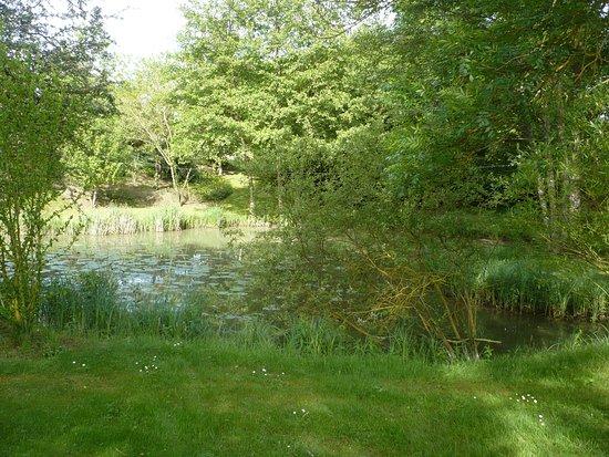 Charnizay, Francia: l'étang
