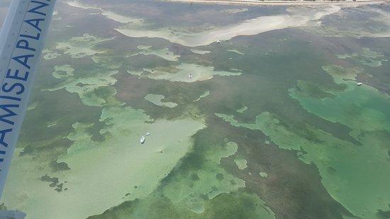 Seaplane Tour of Miami: Great view