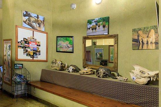 Lower Sabie Restcamp: Reception