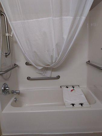 Microtel Inn & Suites by Wyndham Manistee: 0512181555_large.jpg
