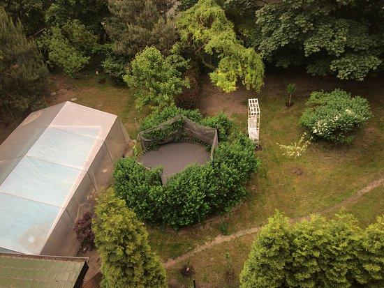 Chojnow, โปแลนด์: La piscine dans le jardin