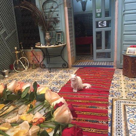 里亞德努爾飯店照片