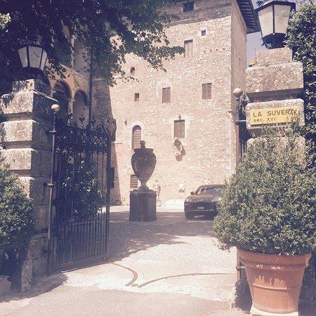 Pievescola, إيطاليا: photo6.jpg