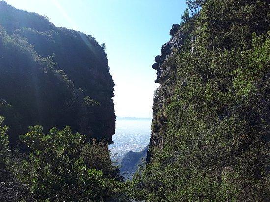 Table Mountain Walks: 20180506_113352_large.jpg
