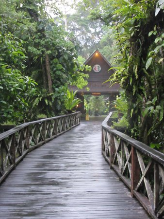 Фотография Sukau Rainforest Lodge