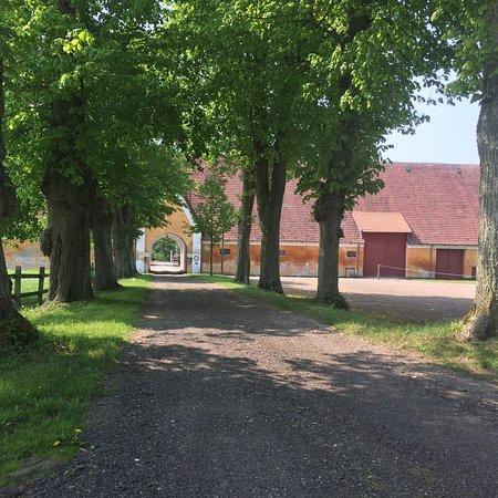 Kaersgaard