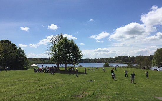 Meerbrook, UK: Family playtime