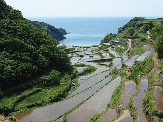 Genkai-cho, Japan: 海と棚田を一望