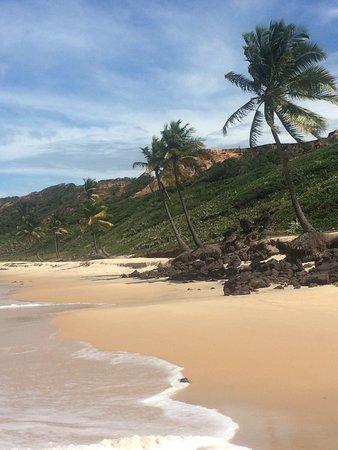 Praia do Coqueirinho Foto