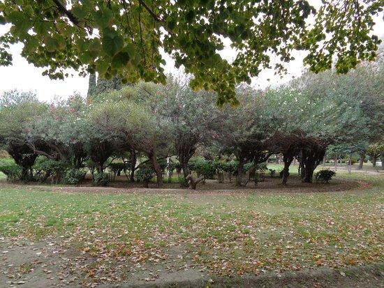 Poetas Garden