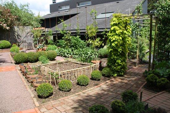Un beau cornus picture of jardin interieur a ciel ouvert athis de l 39 orne tripadvisor - Jardin contemporain athis de l orne nantes ...