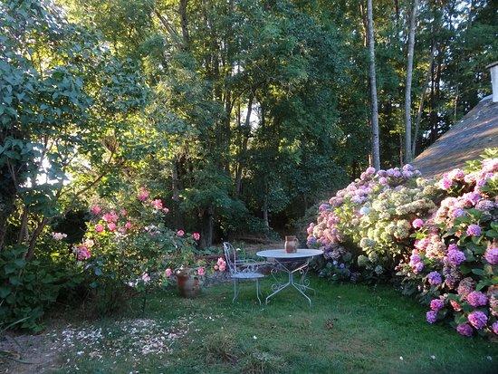 Saint-Erblon, فرنسا: les hortensias