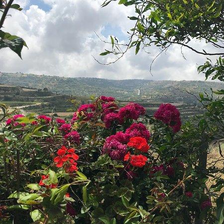 Kallepia, Cyprus: Kika's Garden Homemade Food and Produce