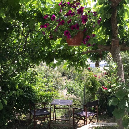 Kallepia, Cyprus: Kika's Garden Homemade Food and Produce