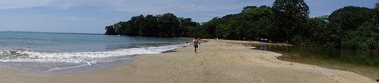 Punta Uva, Costa Rica: DSC01441_large.jpg