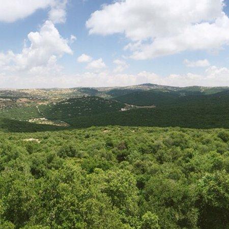 Ajlun, Ιορδανία: photo6.jpg