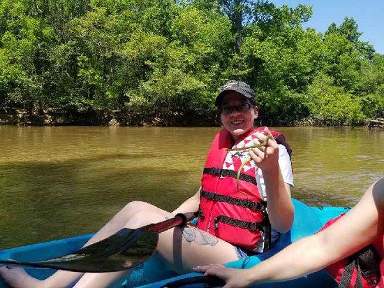 Фотография Honey Island Kayak Tours