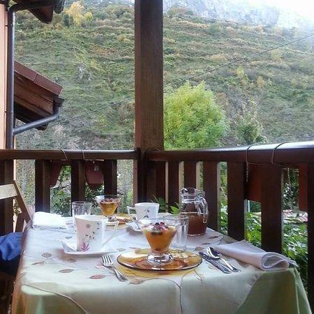 Somiedo Municipality, Espanha: Desayunos en la terraza
